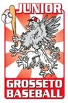 c_100_150_16777215_0_http___www.junior grosseto logo